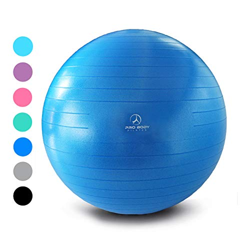 Exercise Ball - Professional Grade Anti-Burst Yoga Ball, Balance Ball for Pilates, Yoga, Stability Training and Physical Therapy (Blue (No Pump), - Exercise Ball Back