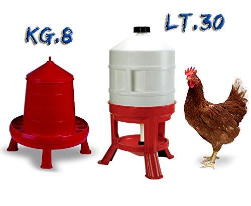Novital Abbeveratoio per polli, galline, pulcini con serbatoio a sifone in plastica da lt.30 e Mangiatoia a tramoggia da kg.8 rialzata da sostegni e griglia forata antispreco mangime