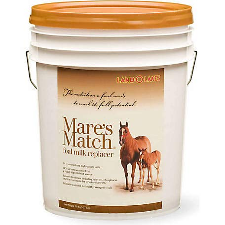 (Land O'Lakes MARES Match Milk REPLACER FOAL 20)