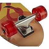 "ReDo Skateboard 28.5"" x 8"" Zodiac Premium Cruiser"
