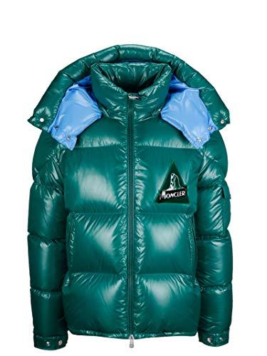 Moncler Luxury Fashion Mens Down Jacket Winter Green (Jacket Men Moncler Color)