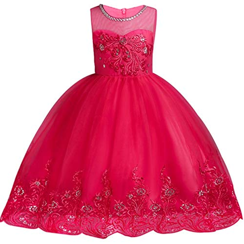 Baby Embroidered Formal Princess Dress for Girl Elegant Birthday Party Dress Girl Dress Baby Girl Christmas 2-14 Years,As Picture9,8