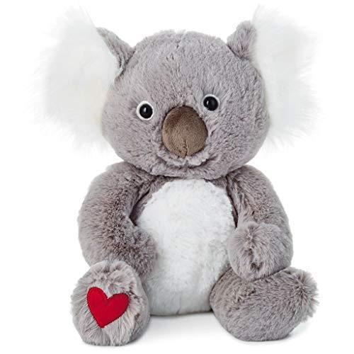 HMK Hallmark Kuddle Koala Bear Stuffed Animal, -