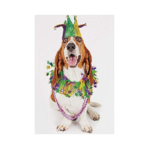 - Polyester Garden Flag Outdoor Flag House Flag Banner,Mardi Gras,Happy Smiling Basset Hound Dog Wearing a Jester Hat Neck Garland Bead Necklace Decorative,Multicolor,for Wedding Anniversary Home Outdoo