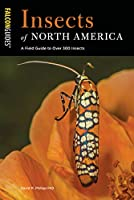 Insects of North America: A Field Guide to Over 300 Insects Front Cover