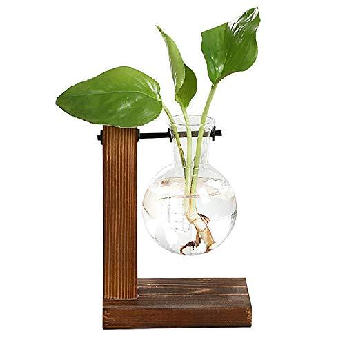 Magiin Jarron de Vidrio Transparente Terrario de Plantas Colgantes con Soporte de Madera Maciza Retro para Jardineria Planta de Hidroponia Decoracion de Casa