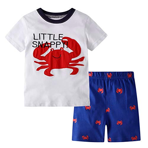 BIBNice Boys Summer Pajamas Toddler Cotton Clothes Sets Size 4t ()