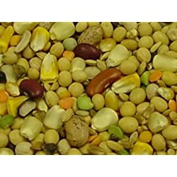 Volkman Seed Featherglow Fancy Soak & Simmer 2lb