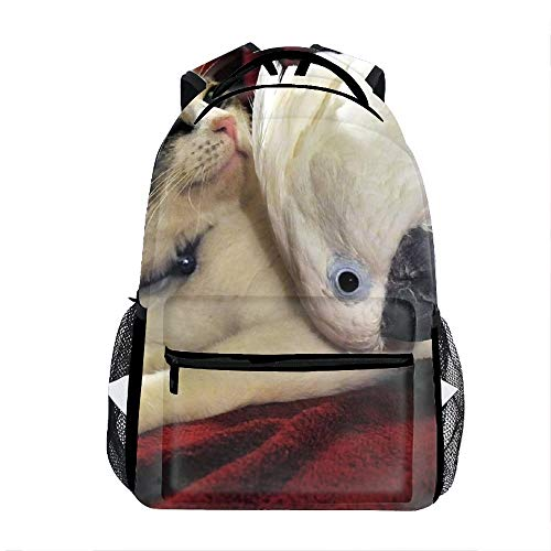 Cat Parrot Friends School Travel Backpack for Boys Waterproof -