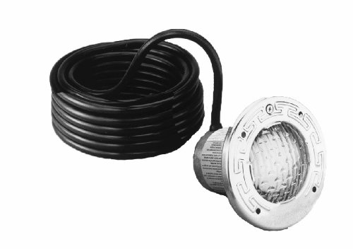 Pentair 78101200 Stainless Steel SpaBrite Incandescent Light for Swimming Pool 12-Volt 100-Watt, 15-Feet (100w Housing)