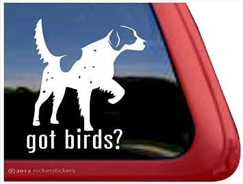 Amazoncom Got Birds English Setter Vinyl Window Auto Decal - Bird window stickers amazon