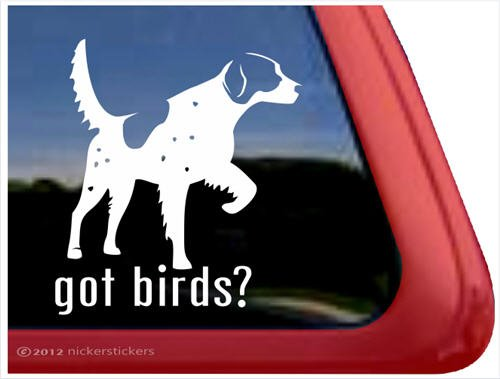 Got Birds? ~ English Setter Vinyl Window Auto Decal Sticker