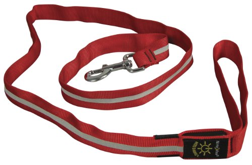 Nite Ize Leash Light Flashes
