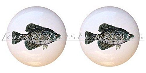 SET OF 2 KNOBS - Black Crappie - Realistic Fish - DECORATIVE Glossy CERAMIC Cupboard Cabinet PULLS Dresser Drawer -
