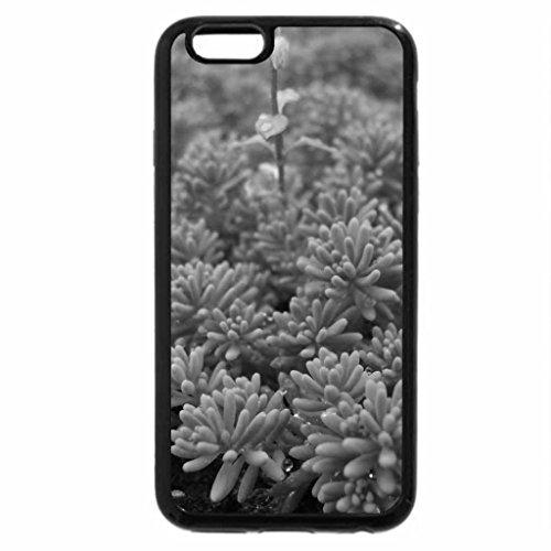iPhone 6S Case, iPhone 6 Case (Black & White) - Grass 2