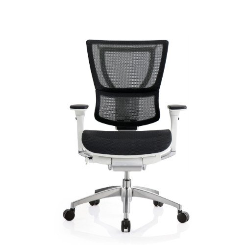 iOO Eurotech Office Ergonomic Chair Black Mesh and White Frame (NO Head Rest) (Eurotech Office Chairs)