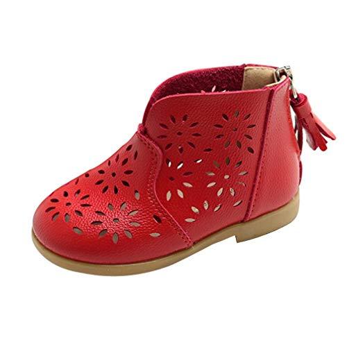 ZODOF Breathable Toddler Baby Boot Girl Zapatos de Verano Niños Niños Princesa Zapatos Calzado Deportivo Running Zapatos Ligero y Transpirables: Amazon.es: ...