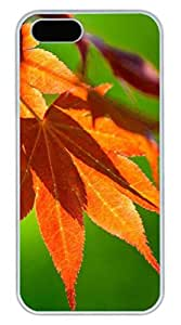 Hanging Leaves Cover Case Skin for iPhone 5 5S Hard PC White