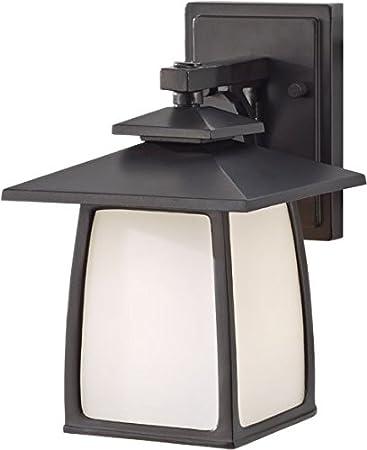 Amazon.com: Home Solutions Wright cámara OL850 1-Light Farol ...