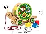 Award Winning Hape Walk-A-Long Snail Toddler Wooden