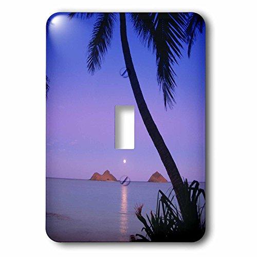 3dRose lsp_89582_1  Moonrise, Mokulua Islands, Lanikai, Oahu, Hawaii Us12 Dpb0323 Douglas Peebles Single Toggle Switch by 3dRose