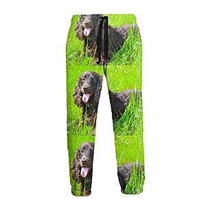 ZALAYUNI Irish Water Spaniel Men Sport Pants, Soft and Comfortable Sweatpants, Joggers Pants for Men 30