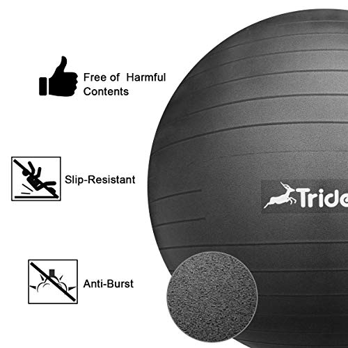 Trideer Exercise Ball (45-85cm) Extra Thick Yoga Ball Chair, Anti-Burst Heavy Duty Stability Ball Supports 2200lbs, Birthing Ball with Quick Pump (Office & Home & Gym) by Trideer (Image #4)