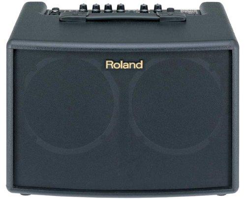 Roland AC-60-60-watt 2x6.5