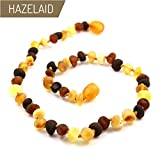 Hazelaid (TM) 12'' Twist-Clasp Baltic Amber Multicolored Semi-Polish Necklace