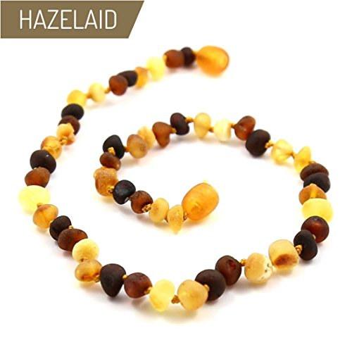 Hazelaid (TM) 12'' Twist-Clasp Baltic Amber Multicolored Semi-Polish Necklace by Hazelaid