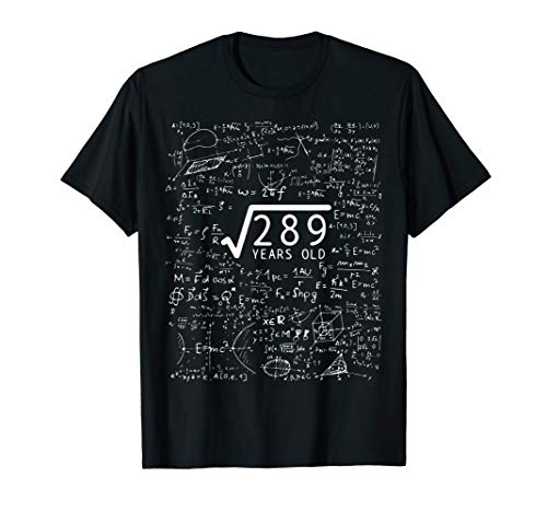 Square Root Of 289 T-Shirt 17th Birthday 17 Years Old Gift
