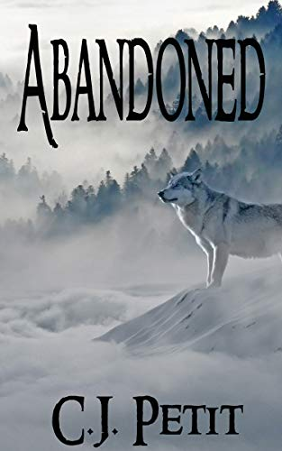 Abandoned by [Petit, C.J.]