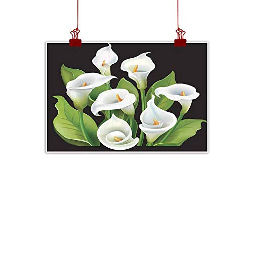 (duommhome Living Room Decorative Painting Bouquet of White Calla Lilies on Black Background Living Room Decorative Painting 20