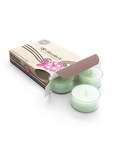Eucalyptus Highly Scented Candles 6 Pack product image