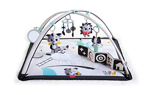 Lights Gymini (                    Tiny Love Magical Tales Gymini Activity Play Mat, Black & White)