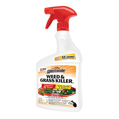 Spectracide HG-96428 Weed & Grass Killer Ready-to-Use, 32-fl oz (Best Weed Spray For Flower Beds)