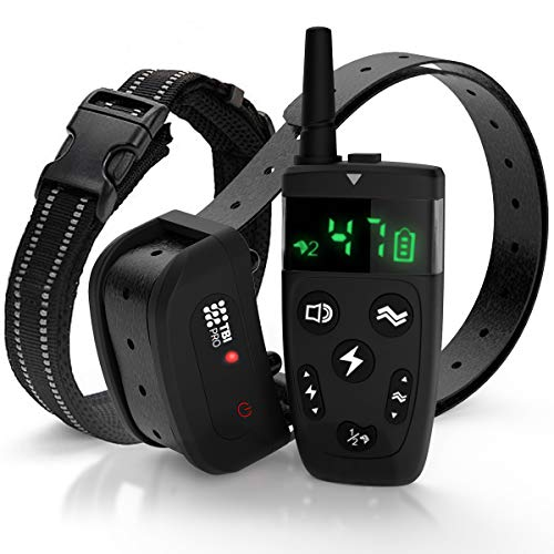 All-New 2019 Dog Training Collar with Remote | Long Range 1600', Shock, Vibration Control, Rechargeable & Ipx7 Waterproof | E-Collar Shock Collar for Dogs Small, Medium, Large Size, All Breeds (10 Best Hunting Dogs)