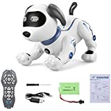 Goolsky TOYS K16A Electronic Pets Robot Dog Stunt Dog Voice Command Programmable Touch-sense Music Song Toy for Kids Birthday Christmas Gift