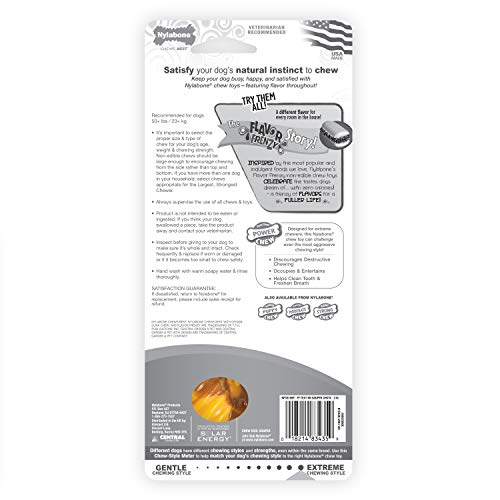 Buy nylabone for aggressive chewers