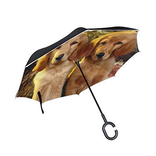 Reverse Umbrella Golden Retriever Puppies Windproof Anti-UV for Car Outdoor Use