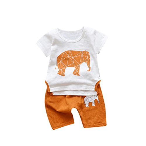 2PC Toddler Kids Baby Boy Cartoon Elepant Printed T Shirt Tops+ Shorts Outfits (18-24 Months, Orange) (Belted Charmeuse Top)