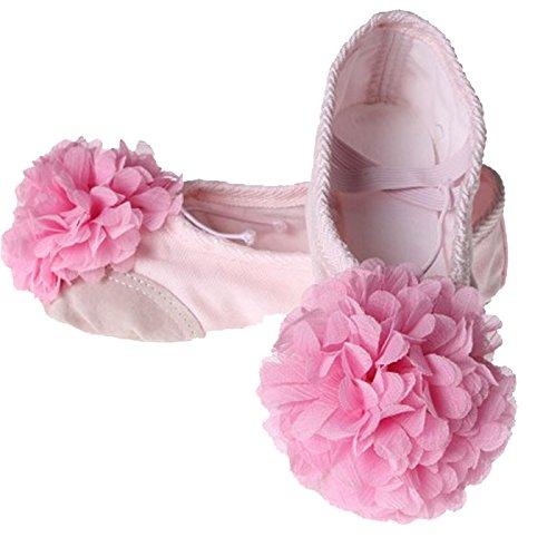 Feoya Chaussures de Ballet Ballerines Chaussons en Toile Ballet avec une Fleur pour Enfant Fille Femme Chaussure de Danse Ballet - Rose - FR 38