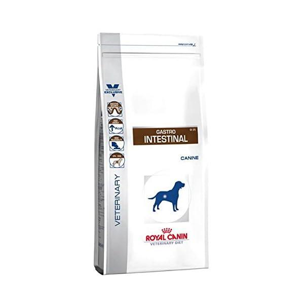 Royal Canin - ROYAL CANIN Veterinary Diet Canine Gastro Intestinal GI25 1