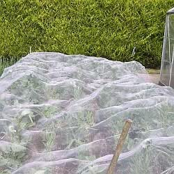 Veggiemesh Insect Netting 1.8m x 10m + 20 Free Crop Cover Clips