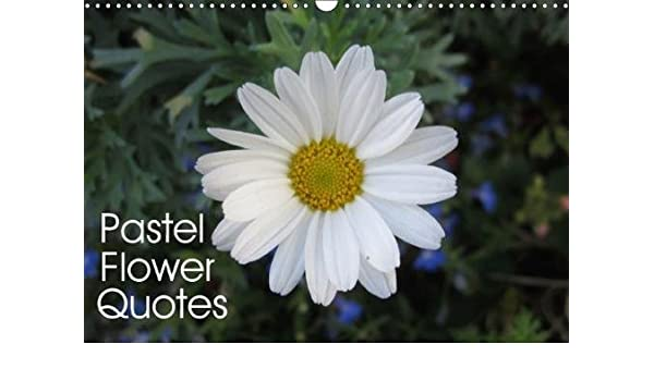 Pastel flower quotes 2018 beautiful flowers and inspiring quotes in pastel flower quotes 2018 beautiful flowers and inspiring quotes in pastel colors calvendo nature maggy baas san jose 9781325261406 amazon books mightylinksfo