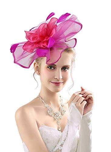 (Women's Organza Church Kentucky Derby Fascinators Tea Party Bridal Hat Mesh Cocktail Headwear Feather Hats)