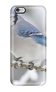 Iphone 6 Plus Hard Back With Bumper Silicone Gel Tpu Case Cover Blue Bird