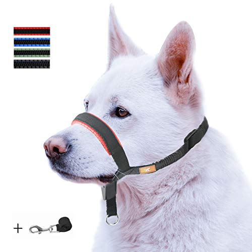 wintchuk Dog Head Collar with Padded Leather, Head Harness Stops Dog Pulling, Head Leash (L, Red) from wintchuk