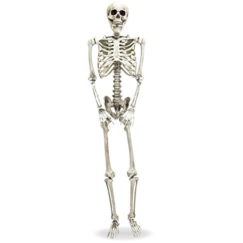 Best Choice Products 5-Foot Realistic Full Body Hanging Poseable Skull Skeleton Halloween Decoration w/Movable Joints, White