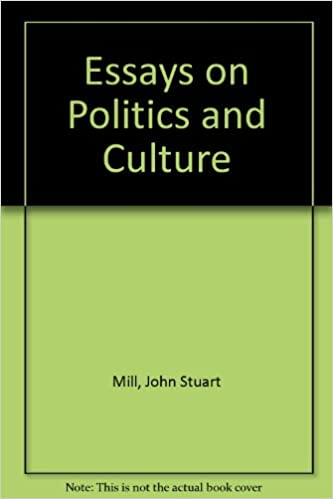 a essay about politics